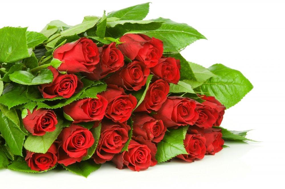 Цветов, букет красных цветов на белом фоне
