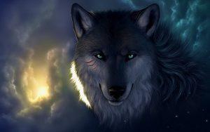 Картинки волков на рабочий стол красивые017