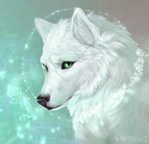Картинки волк и кошка любовь   подборка 021