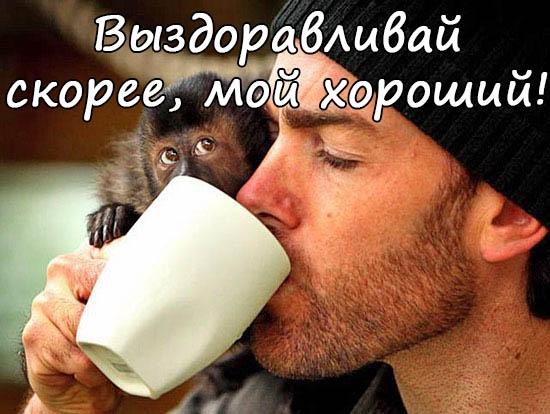 Сергей выздоравливай скорей открытки, для поздравления