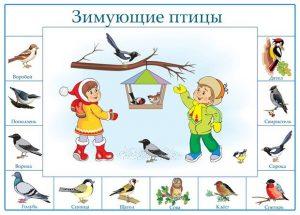 Картинки дети зимой кормят птиц 026