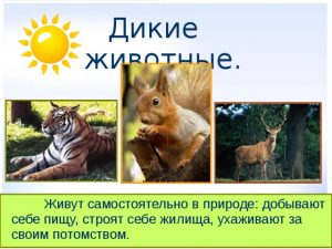 Картинки дикие и домашние животные 1 класс (15)