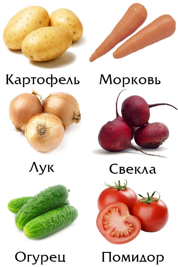 Картинки для детей помидор для детского сада (28)