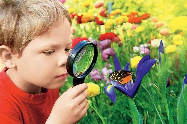Картинки для детей почемучки 022