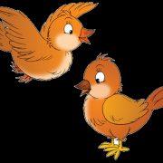 Картинки для детей птички на прозрачном фоне (26)