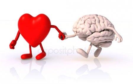 Картинки для детей сердце человека   рисунки 016