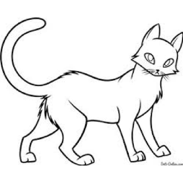 Картинки для срисовки кошки   красивые и милые (10)