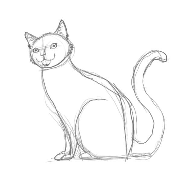 Картинки для срисовки кошки   красивые и милые (13)
