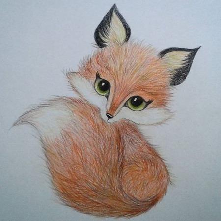 Картинки для срисовки кошки   красивые и милые (23)