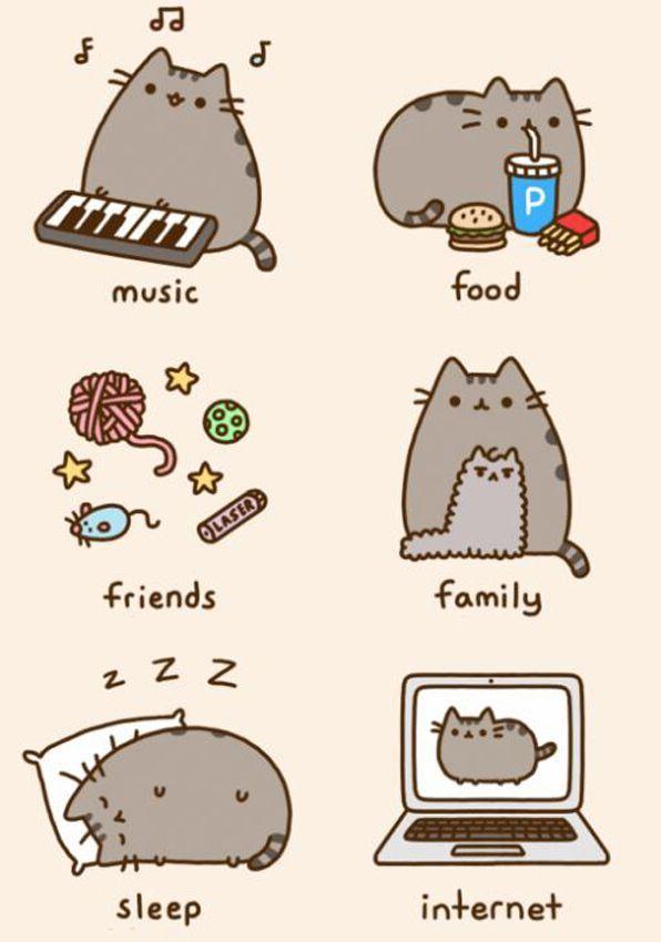 Картинки для срисовки кошки   красивые и милые (30)