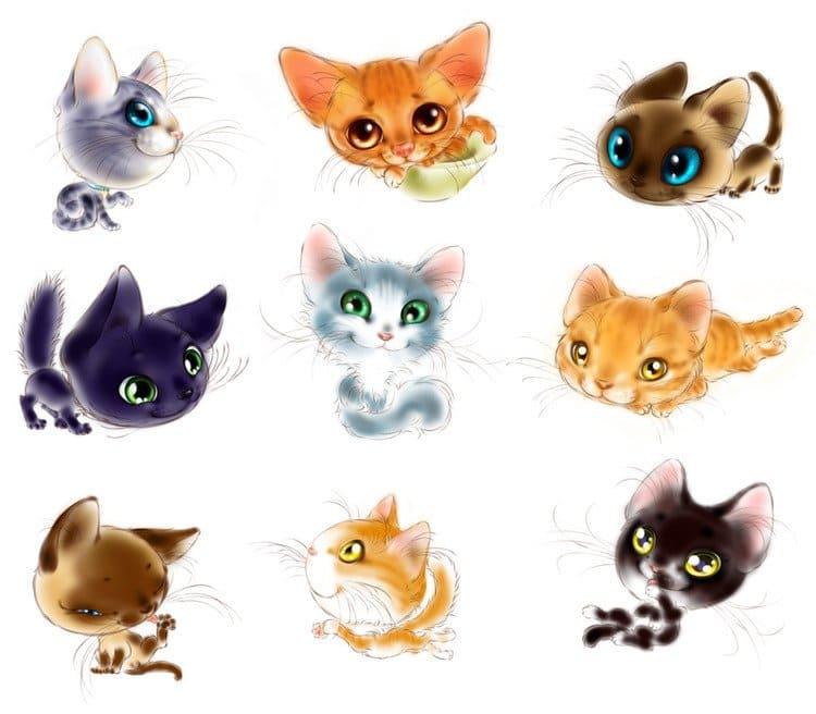 Картинки для срисовки кошки   красивые и милые (5)