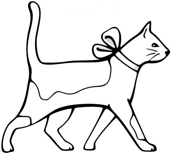 Картинки для срисовки кошки   красивые и милые (7)