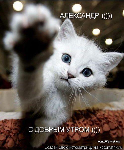 Картинки доброе утро Александр 001