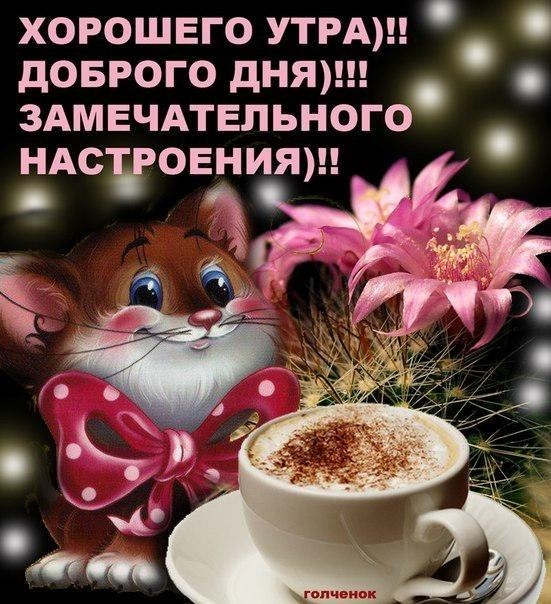 Картинки доброе утро Александр 017