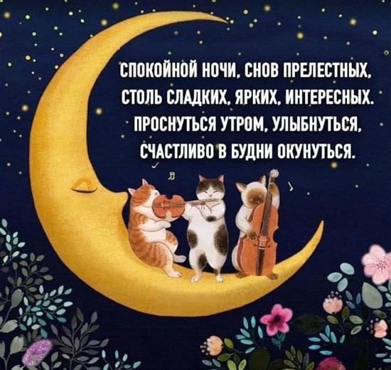 Которые раскрываются, открытки доброй ночи в смс