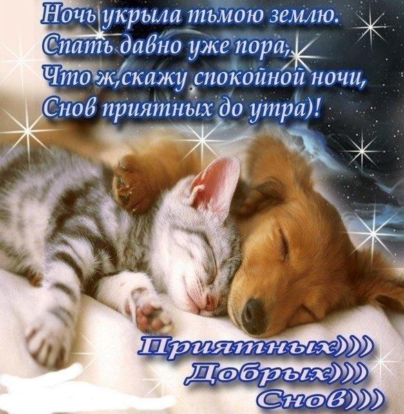 Картинки добрых снов парню  подборка открыток 015