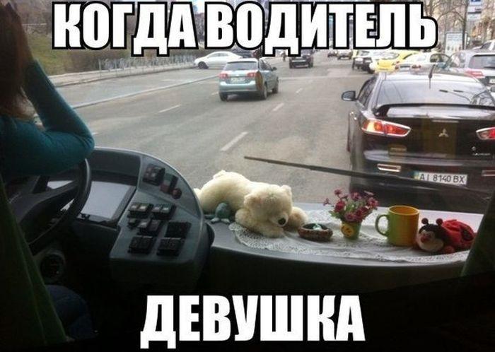 Картинки за рулем смешные и веселые003