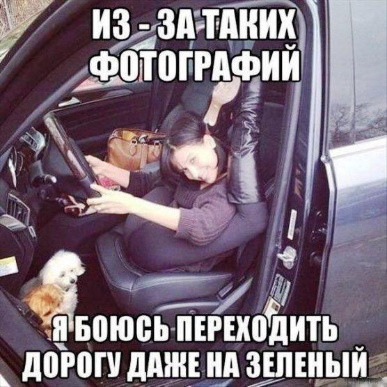 Картинки за рулем смешные и веселые007