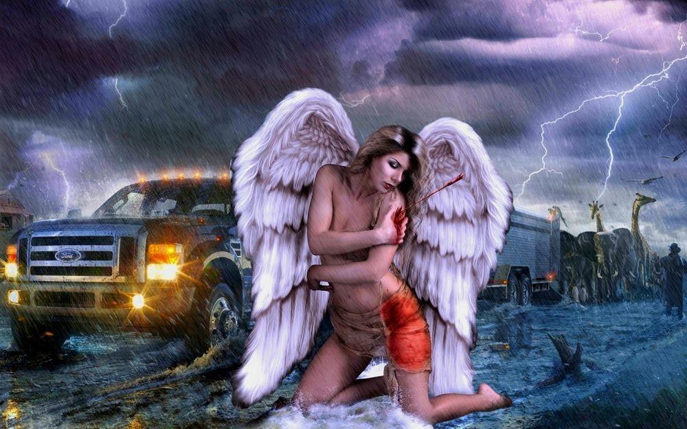 Картинки как называется ангел со стрелой 005