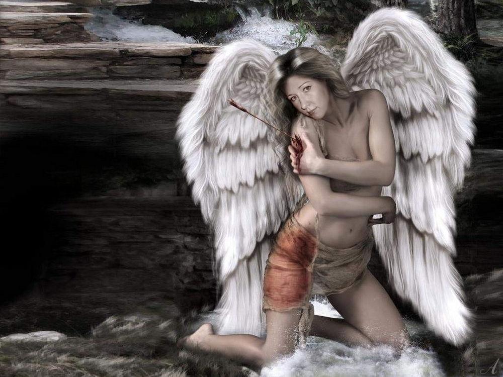 Картинки как называется ангел со стрелой 024