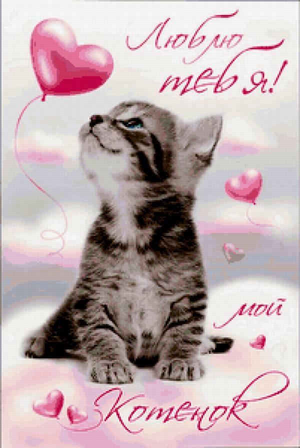 Картинка люблю тебя котик мой