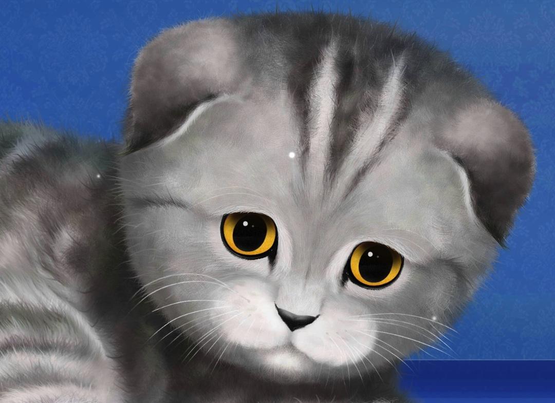 Картинки котят скачать на телефон   супер заставки (6)