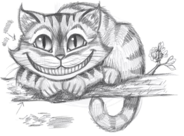Картинки кошки карандашом для срисовки 001