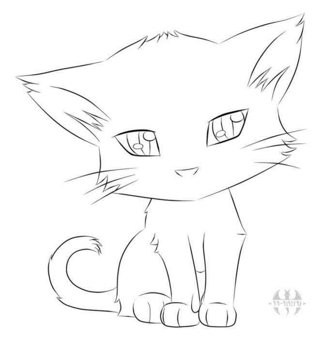 Картинки кошки карандашом для срисовки 017