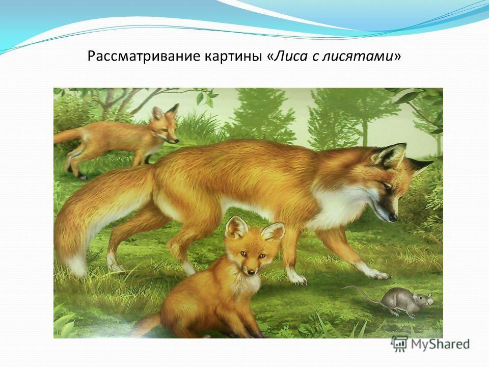 Картинки лиса с лисятами для детского сада001