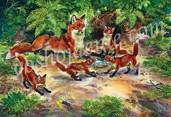 Картинки лиса с лисятами для детского сада004