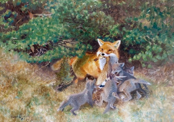 Картинки лиса с лисятами для детского сада010