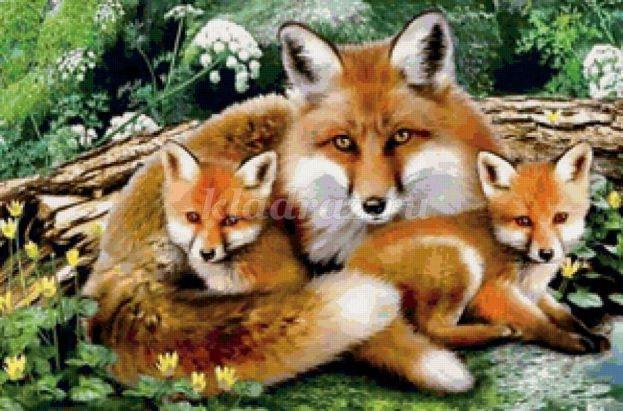 Картинки лиса с лисятами для детского сада021