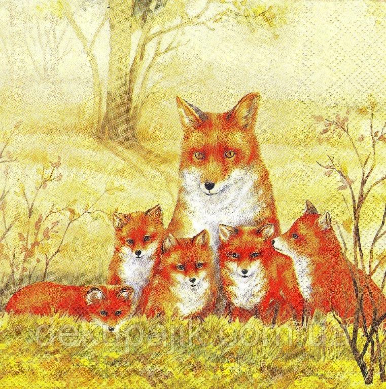 Картинки лиса с лисятами для детского сада024