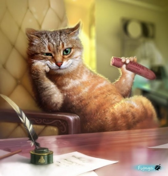 Картинки мой ты котик   подборка фото 028