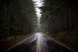 Картинки на рабочий стол дорога в лесу   подборка (16)