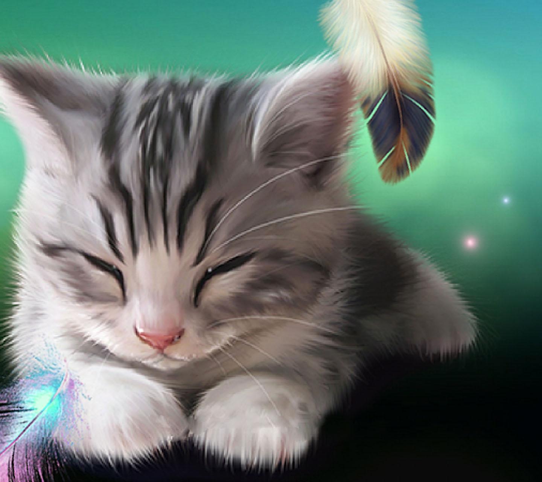 Картинки на телефон котята скачать   обои (5)