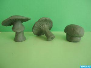 Картинки несъедобных грибов для детей с названиями   сборка (29)