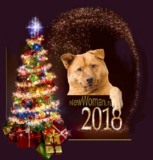 Картинки новый год собачки   фото 007