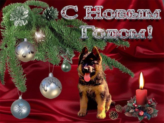 Картинки новый год собачки   фото 016
