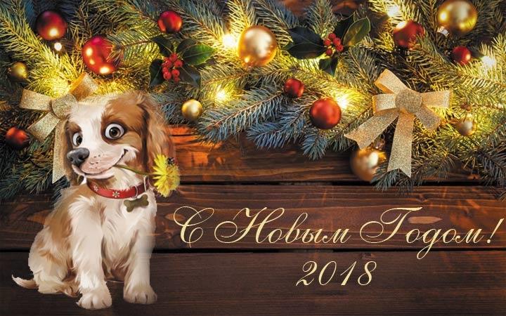 Картинки новый год собачки   фото 017