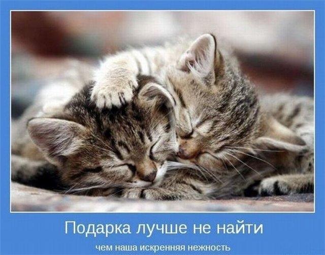 Картинки обнимаю тебя и люблю011