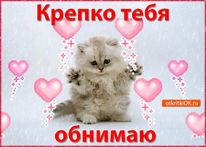 Картинки обнимаю тебя и люблю017