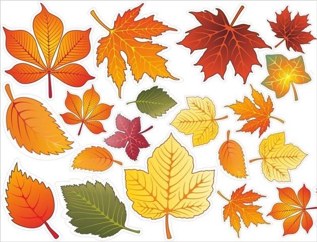 Картинки осенний листок нарисованный   подборка 002