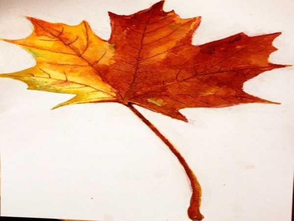 Картинки осенний листок нарисованный   подборка 003