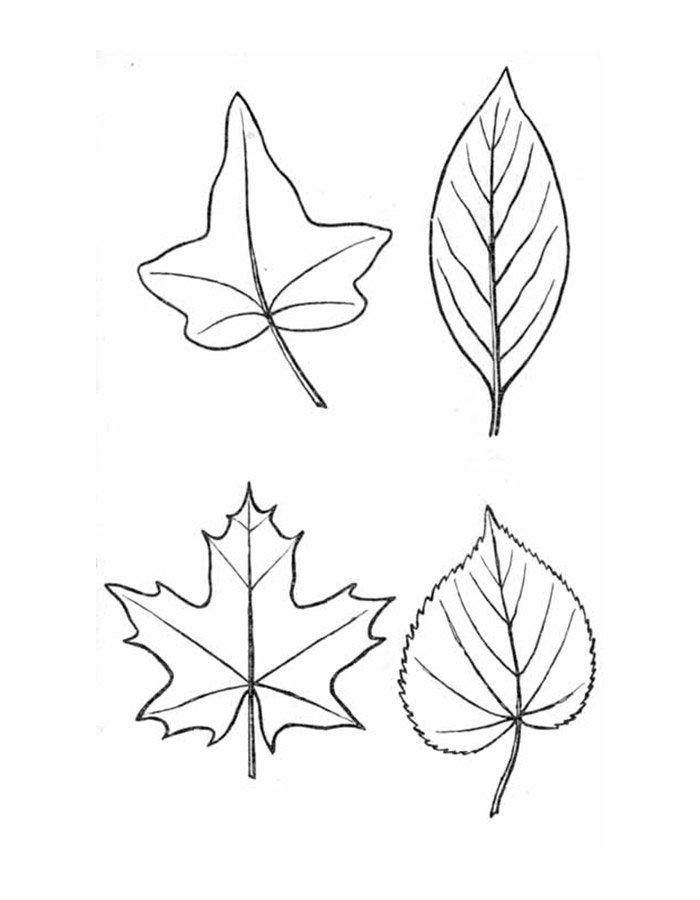 Картинки осенний листок нарисованный   подборка 009