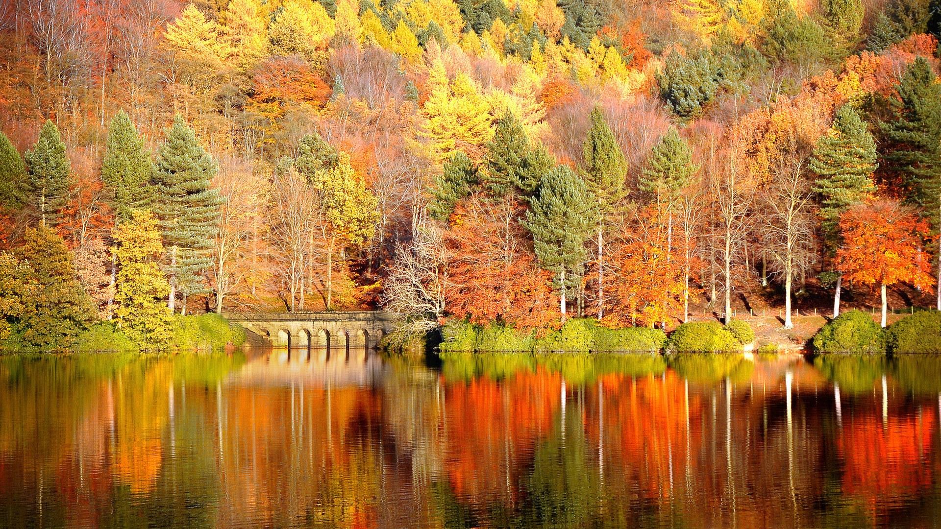 Картинки осень на комп   очень красивые (2)