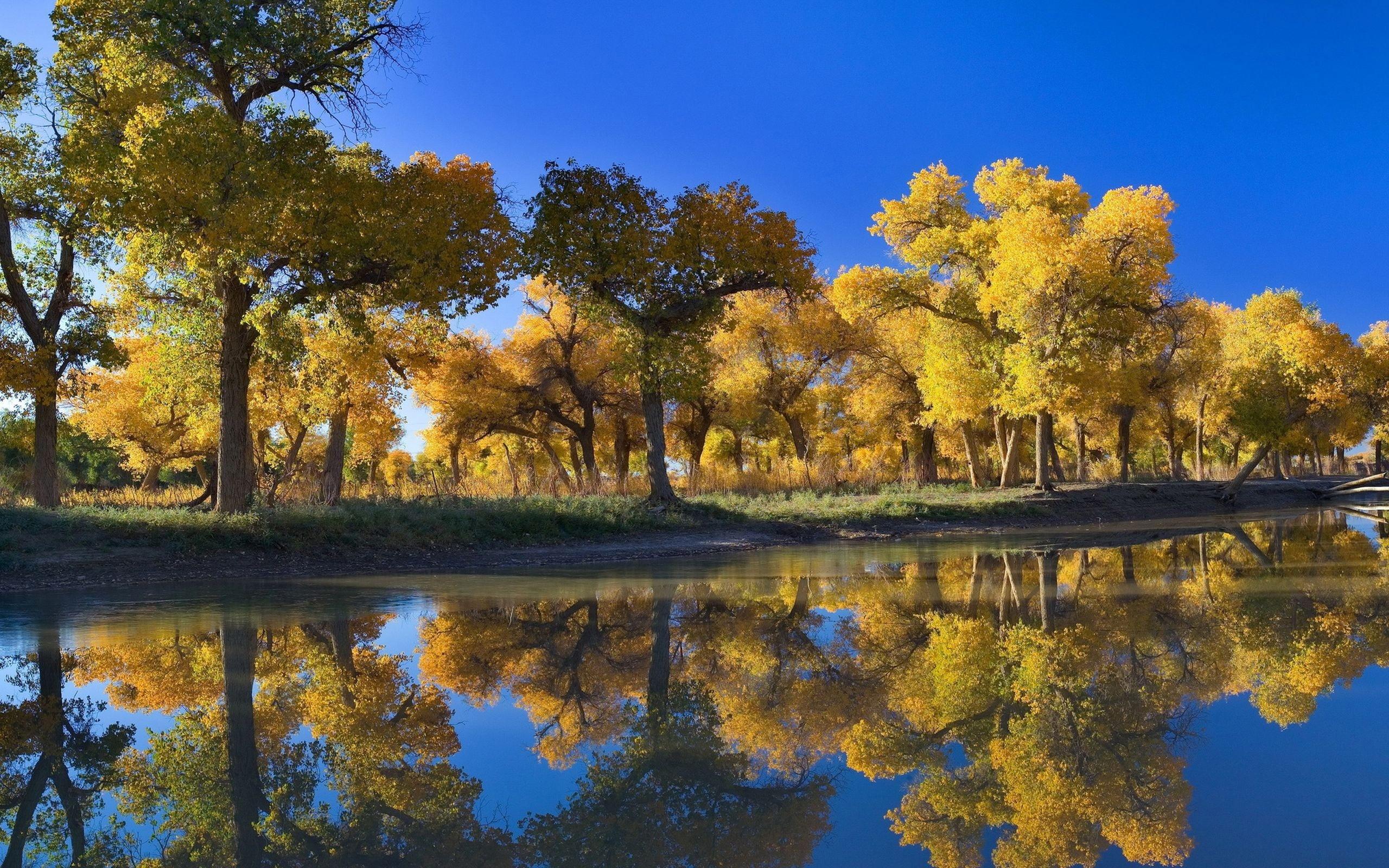 Картинки осень на комп   очень красивые (5)
