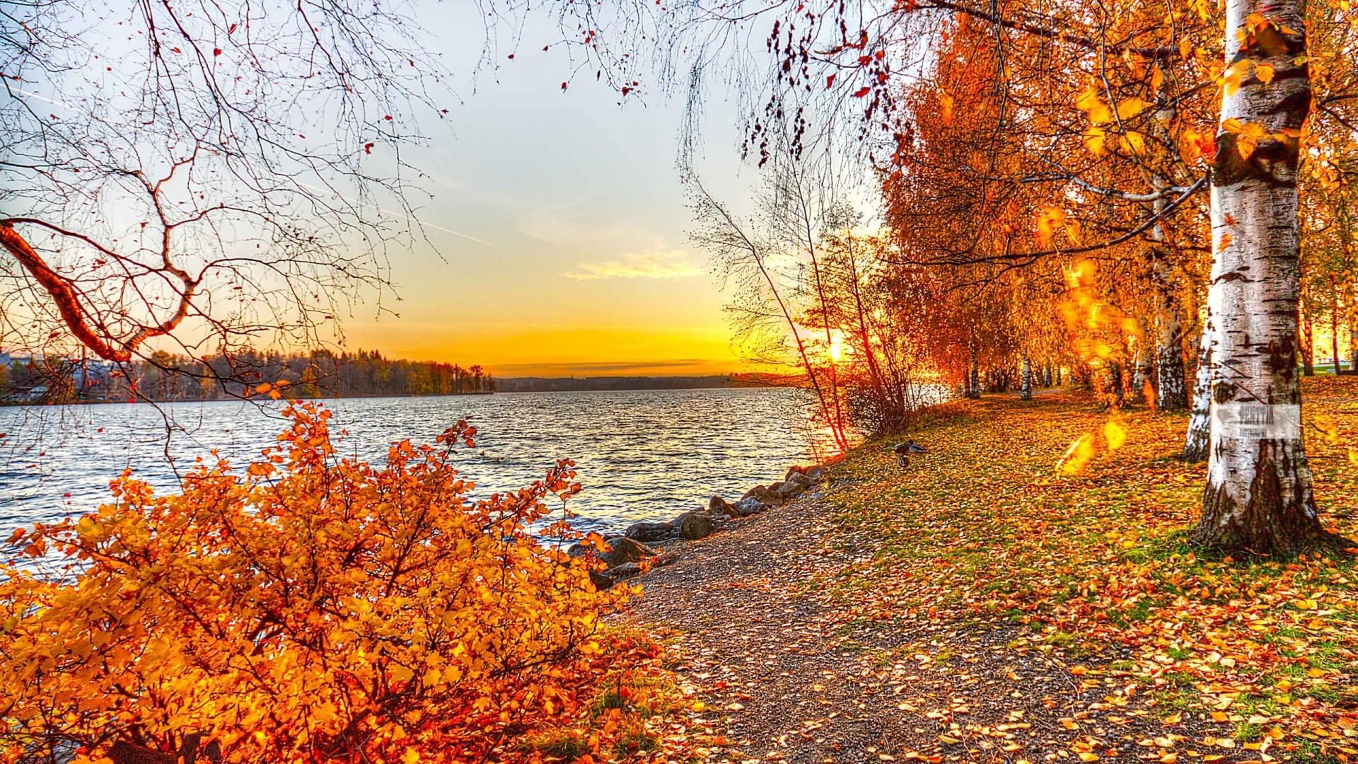 Картинки осень на комп   очень красивые (8)