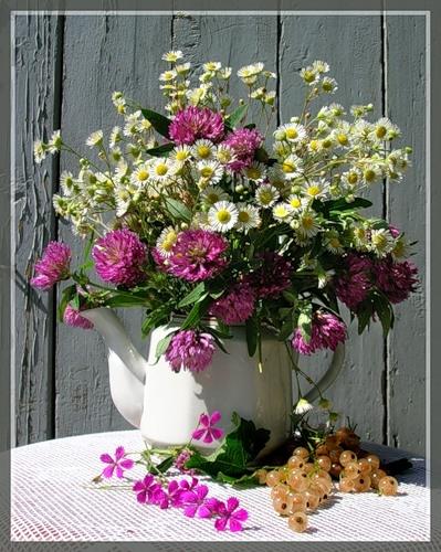 Картинки полевых цветов   красивые и увлекательные (1)