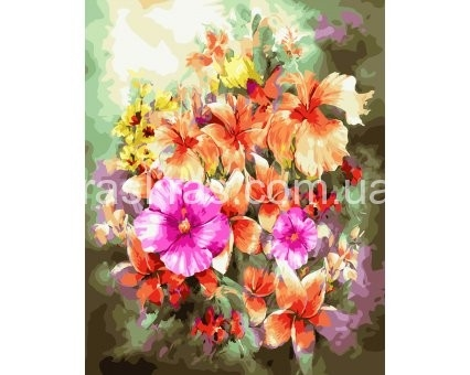 Картинки полевых цветов   красивые и увлекательные (16)